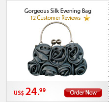 Gorgeous Silk Evening Bag