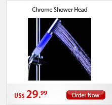 Chrome Shower Head