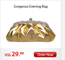 Gorgeous Evening Bag