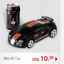 Mini RC Car