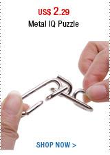 Metal IQ Puzzle