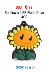 Sunflower USB Flash Drive