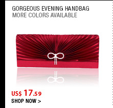 Gorgeous Evening Handbag