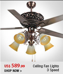 Ceiling Fan Lights