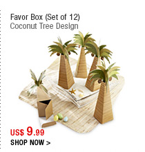 Favor Box (Set of 12)