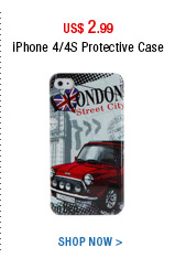 iPhone 4/4S Protective Case