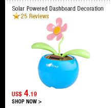 Solar Powered Dashboard Decoration