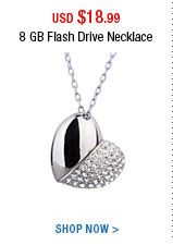 8 GB Flash Drive Necklace