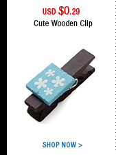 Cute Wooden Clip