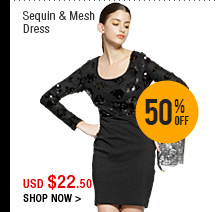 Sequin & Mesh Dress