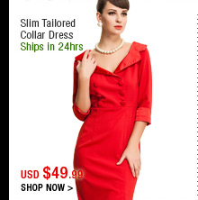 Slim Tailored Collar Dress