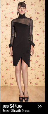 Mesh Sheath Dress