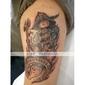 roterande tatueringsmaskin liner / shader