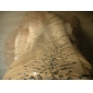 Robe - Champagne Soirée formelle Sirène Sans bretelles/Col en cœur Traîne moyenne Organza Grandes tailles