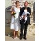 Sheath/Column Plus Sizes Wedding Dress - Ivory Tea-length One Shoulder Chiffon