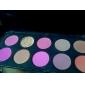 10 couleurs professionnelles rougir palette (yy015)