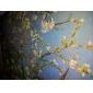 Handmålade Oil Painting Filialer ett mandelträd i blom Landskap Van Gogh