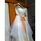 lanting는 몸집이 작은 A 라인 / 공주 신부 / 플러스 웨딩 드레스 코트 기차 크기