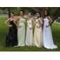 Formal Evening Dress - Pool Plus Sizes Sheath/Column Notched/Strapless Sweep/Brush Train Chiffon/Stretch Satin