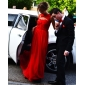 Formal Evening/Military Ball Dress - Ruby Plus Sizes Sheath/Column Sweetheart Floor-length Chiffon