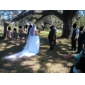 One-tier Tulle Chapel Veil (More Colors)