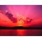GU10 4W 2700K 220LM 27x5050smd теплый белый свет водить пятна лампы (220-240V)