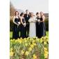 Lanting Bride® Gulvlang Chiffon Brudepikekjole A-linje Haltertopp Plusstørrelse / Petite med Drapering / Rynker / Ruchiing / Plissert