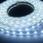 5m rezistent la apa 300 * 53528 smd lumina alb alb / cald a condus lampă benzi (DC12V)