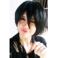 Perruques de Cosplay One Piece Monkey D. Luffy Noir Court / Droite Anime Perruques de Cosplay 32 CM Fibre résistante à la chaleur Masculin
