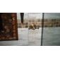 patère, laiton antique finition mural, accessoire de salle de bain (1018-j-29-2)