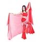 Chiffon Dance Performance Veil (More Colors)