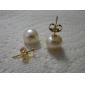 14k Gold White 7.5-8mm AAA Freshwater Pearl Earring