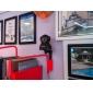 wanscam® coperta IP PTZ telecamera di sorveglianza giorno notte senza fili (1/4 di pollice sensore CMOS a colori)