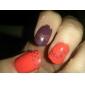 7st Nail Art Stamping Image Kit (2 plattor 3 flaskor polska en Tätning 1 fil)