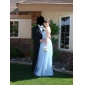 Formal Evening/Prom Dress - Champagne Plus Sizes A-line/Princess Strapless Floor-length Tulle