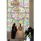 Jupon de Mariage en Nylon, Coupe Robe de Bal