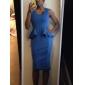 Femei Abi Neck Detalii mâneci Midi Dress