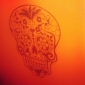 이동식 두개골 자연 벽 스티커