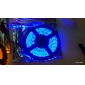 Preuve de l'eau 5M LED Strip avec 300 LED (bleu / jaune / vert)