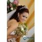 headpieces Áustria lindo strass tiara de noiva