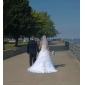 Two Layer Elbow Wedding Bridal Veil