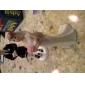 Kuchendeckel Fußball Bräutigam& verärgerten Braut Kuchendeckel