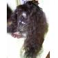 22inch indiska Remy hår Front Lace Wig Kinky Curl Off Black (# 1b) Lång Peruk