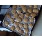 Plastique Cookie animaux Moule Lot de 6 pièces