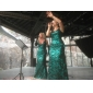 Formal Evening/Military Ball Dress - Dark Green Plus Sizes Trumpet/Mermaid/Sheath/Column V-neck Sweep/Brush Train Sequined